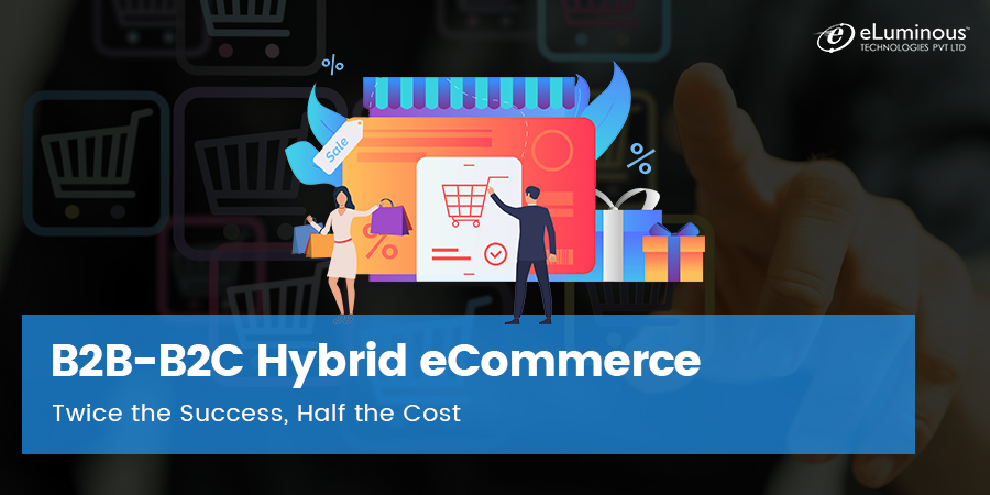 B2B-B2C Hybrid eCommerce: Twice the Success, Half the Cost